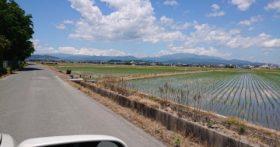 山形は田植えも済んでさわやかな天候が続いています