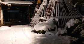 今年の初雪です